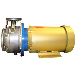 Goulds e-SH 316 Stainless Steel End Suction Centrifugal Pump- Product Information Sheet